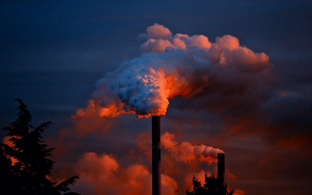Ogrodzenia przemysłowe – rodzaje i zastosowanie