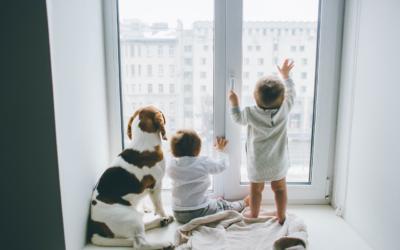 Idealne okna do domu – jakie profile wybrać?